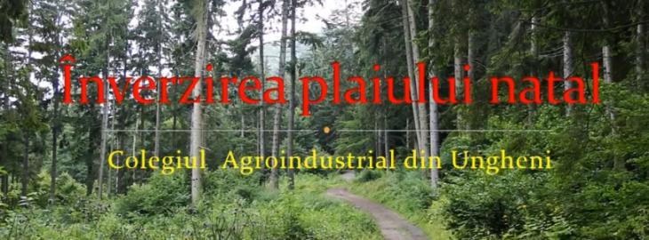 Colegiul Agroindustrial Ungheni